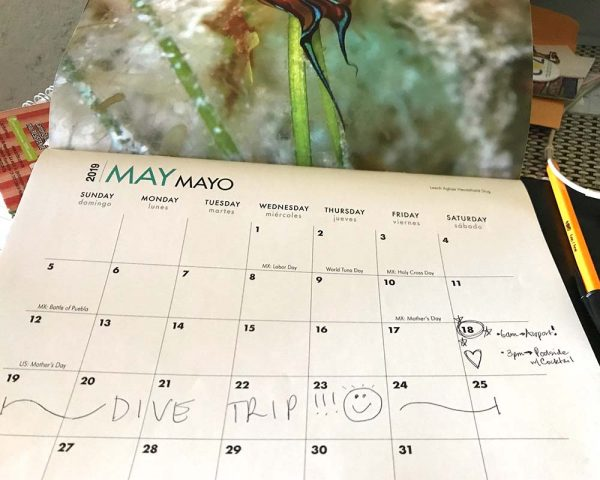 Plan your next dive trip with our calendar